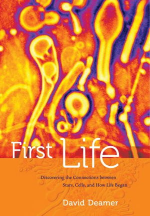 Cover art for First Life